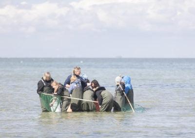 Gruppe børn fisker efter muslinger